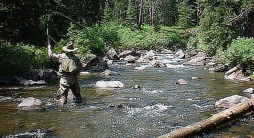 Fly Fishing in Elk Horn Basin