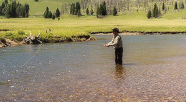 Fly Fishing Slough Creek